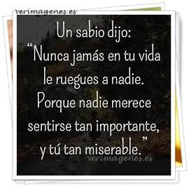Imagen Un sabio dijo: