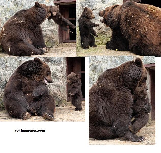 Una mama osa disciplina a su hijo y despues lo abraza