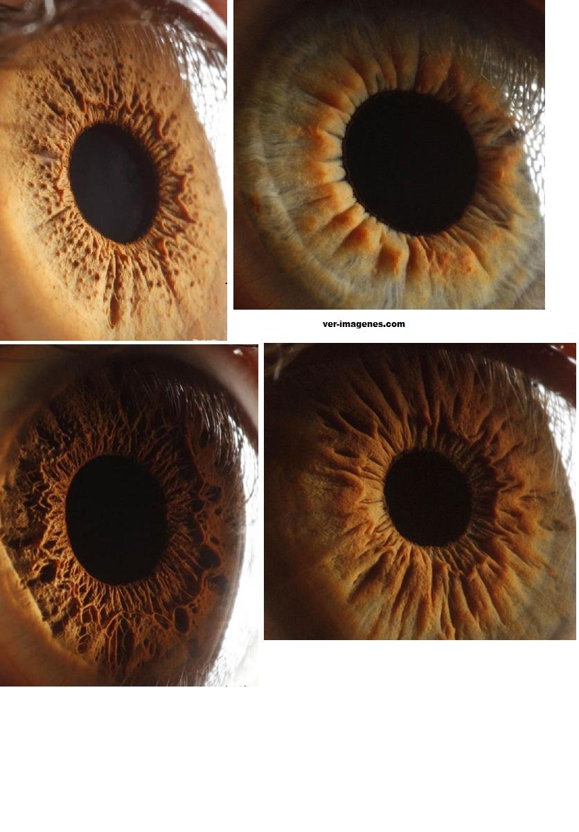 Increíble, el ojo humano se ve como los cráteres en marte