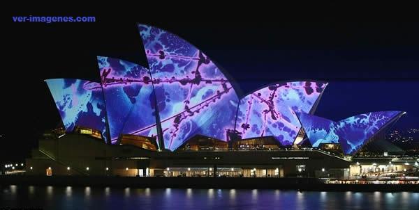 El teatro de la Ópera de sydney se ilumina de colores