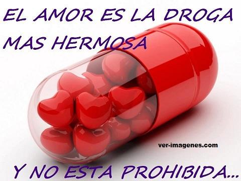 El amor .....