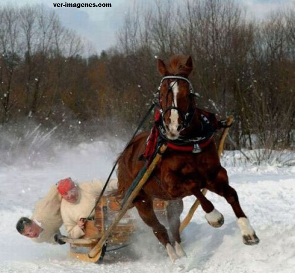Carrera con caballo