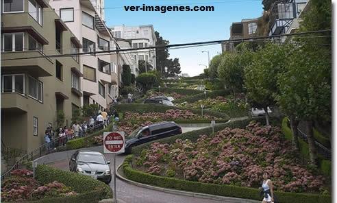 La Calle con más curvas del Mundo