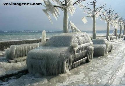 Autos Congelados