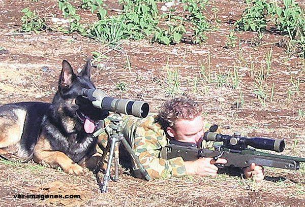 Militares graciosos