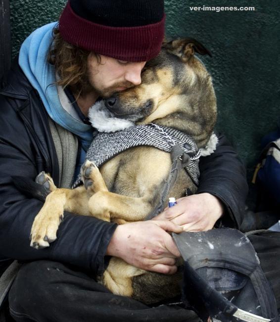 El perro, el mejor amigo del hombre!