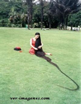 La mujer con el cabello mas largo del mundo