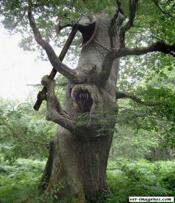 Un árbol muy furioso!