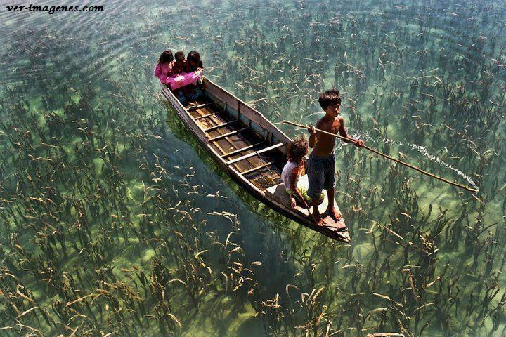 Niños paseando en canoa