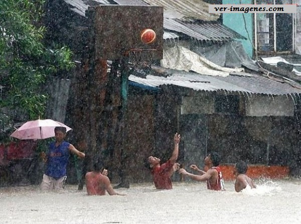 Amor al baloncesto