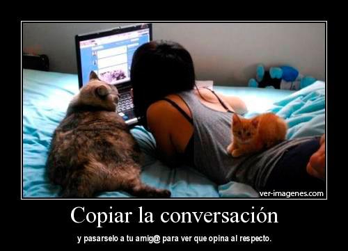 Copiar la conversación