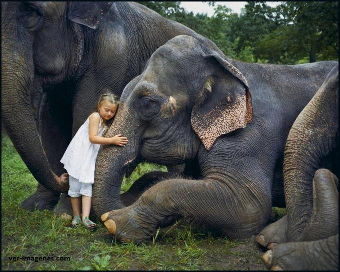 Niña abrazando a un elefante.