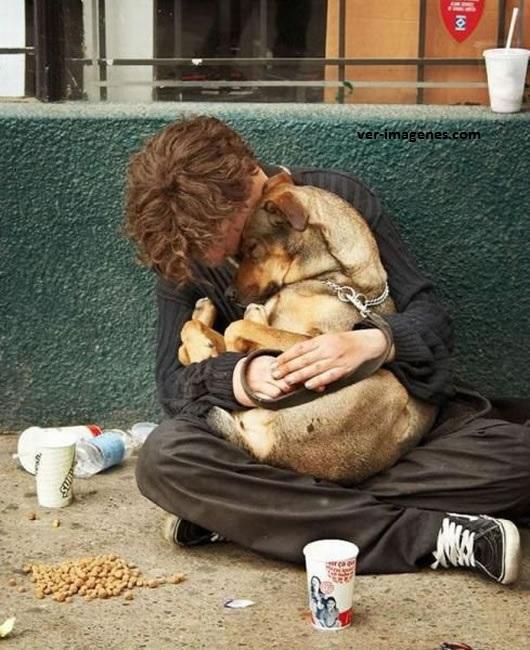 Imagen Hombre sin hogar y su inseparable amigo