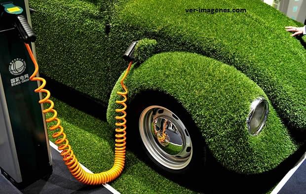 Un verdadero auto ecológico!