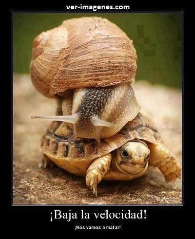 ¡ Baja la velocidad !