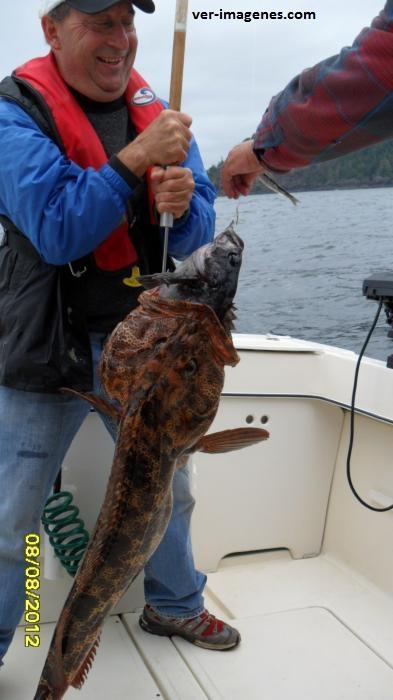Dos pescados de un solo tiro!