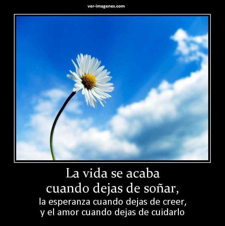 La vida se acaba cuando dejas de soñar...