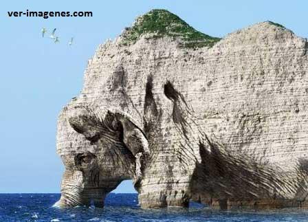 Formación rocosa en forma de elefante