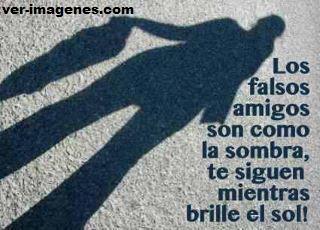 Los falsos amigos .....