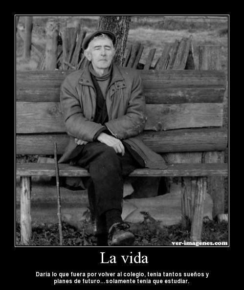 Imagen La Vida
