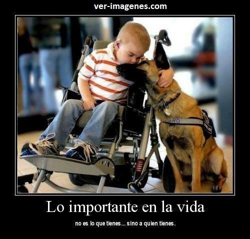 Lo importante en la vida .....