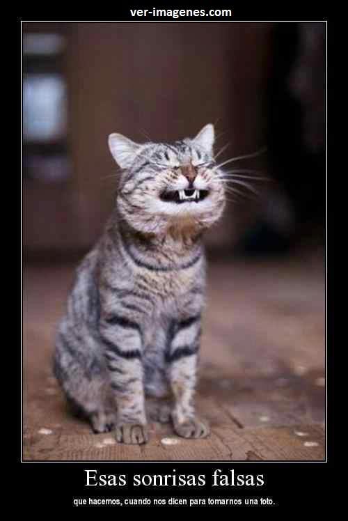Imagen Esas sonrisas falsas....