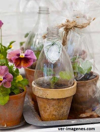 Invernadero con botellas pet