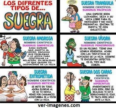 Diferentes tipos de suegras