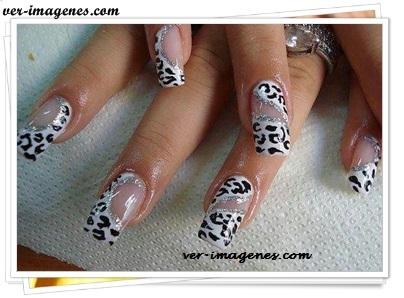 Diseño de uñas a la tigresa