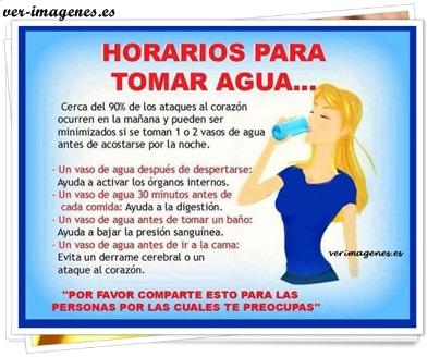 Horarios para tomar agua....