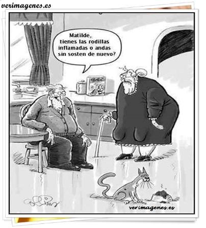 Amor de viejos