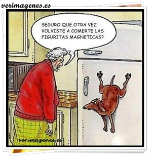 Perro comilon