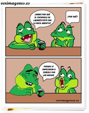 Hay que saber coser un cocodrilo