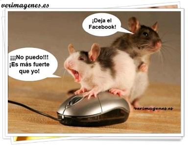¡ deja el facebook !