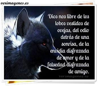 Imagen De Dios Nos Libre De Los Lobos Vestidos De Ovejas