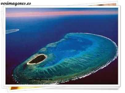 La isla Lady Musgrave