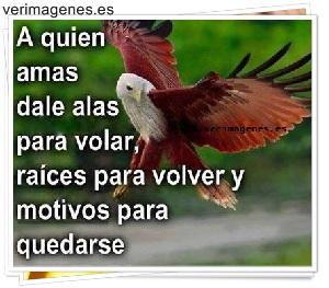 A quien amas dale alas