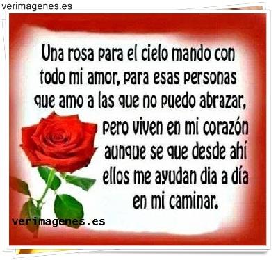 Una rosa para el cielo