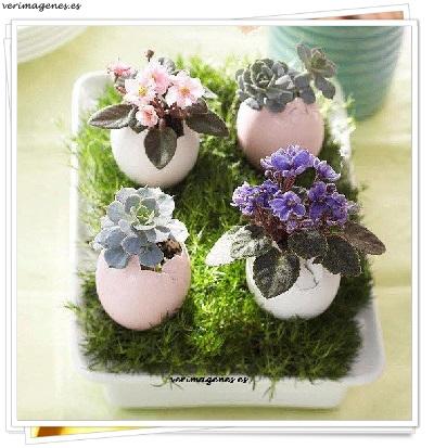 Maceteros con cascara de huevos