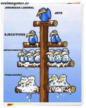 Jerarquía laboral