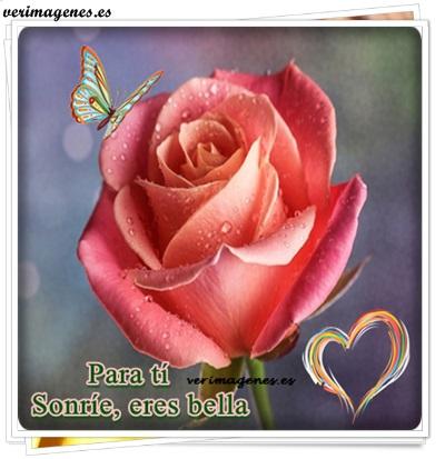 Imagen Para ti