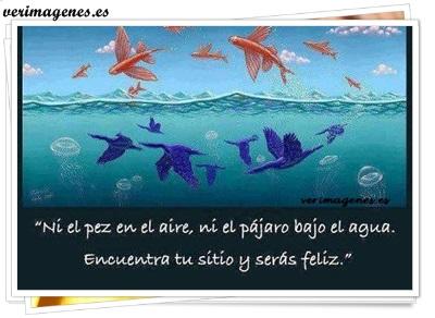Ni en el pez en el aire, ni el pájaro bajo el agua