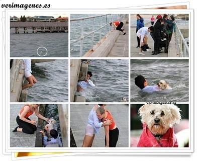 Hombre arriesga su vida para salvar un perrito