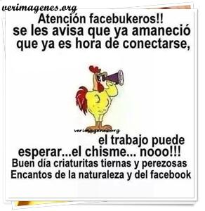 Atencion facebukeros !!