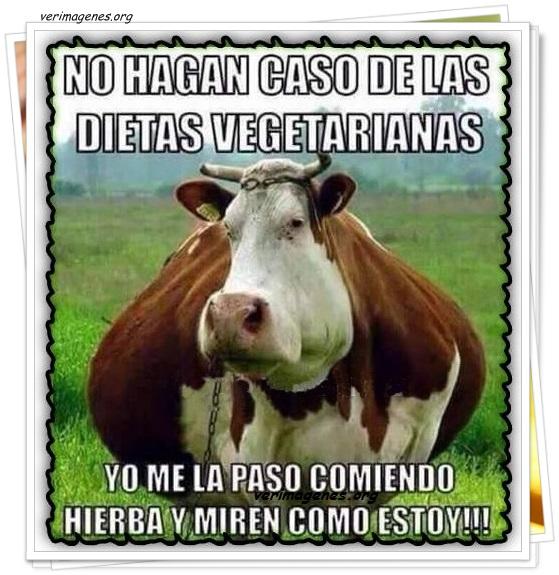 No hagan caso a las dietas vegetarianas