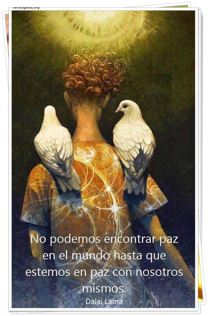 No podemos encontrar paz en el mundo