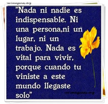 Nada ni nadie es indispensable