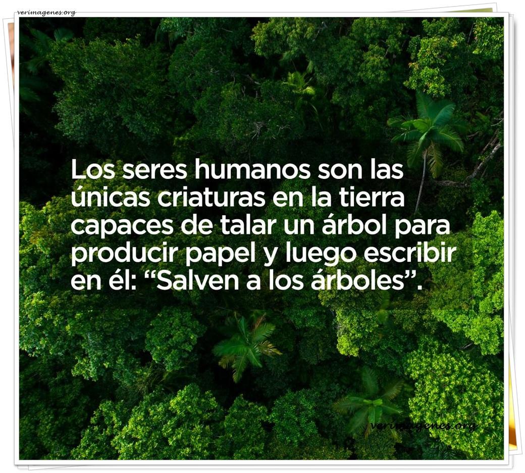 Los seres humanos son los únicas criaturas en la tierra