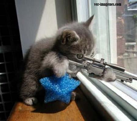 Vigilante del barrio