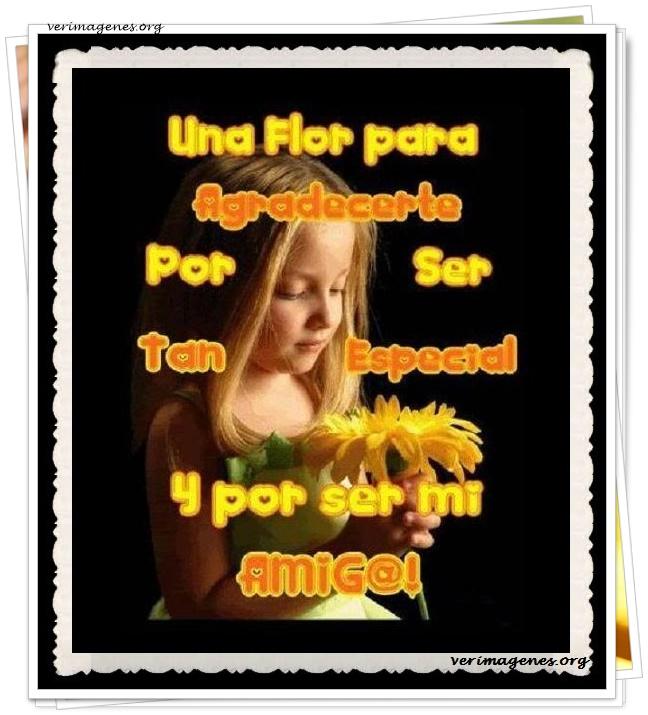Una flor para agradecerte